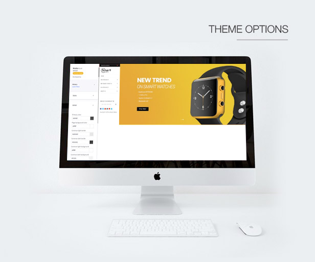 Theme Options / Theme Editor