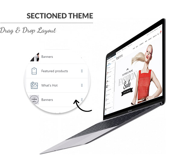 Sectioned Shopify Theme